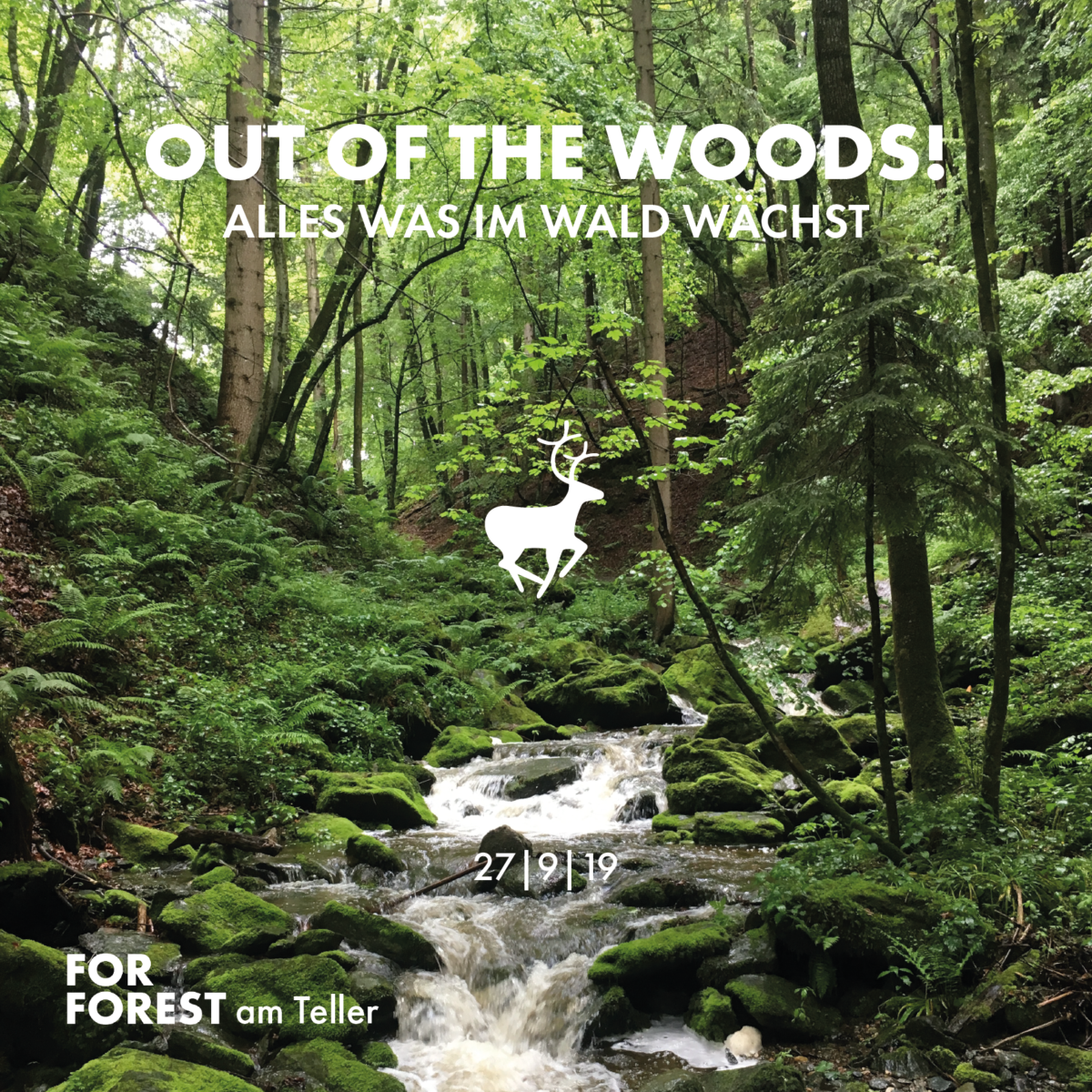 """""""OUT OF THE WOODS! Alles was im Wald wächst"""""""